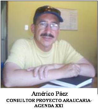 20061215223211-americo-araucaria-001.jpg