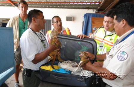 20120710020838-turista-aleman-detenido-en-galapagos.jpg