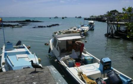 20110214223726-pesca.jpg